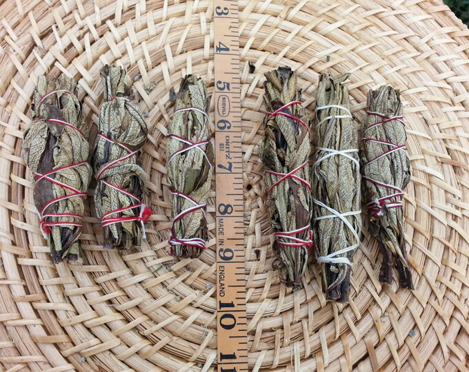 Small Yerba Santa Smudge stick ~ 1 small yerba santa bundle approx 3~4.5 inches, wild harvested, Reiki infused