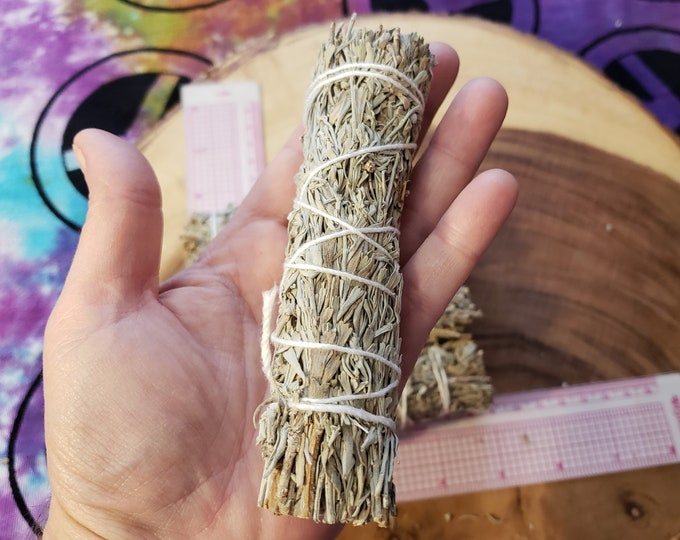 Small Shasta (Blue) Sage (Salvia clevelandii) Bundle approximately 5 inches, wild harvested, Reiki infused