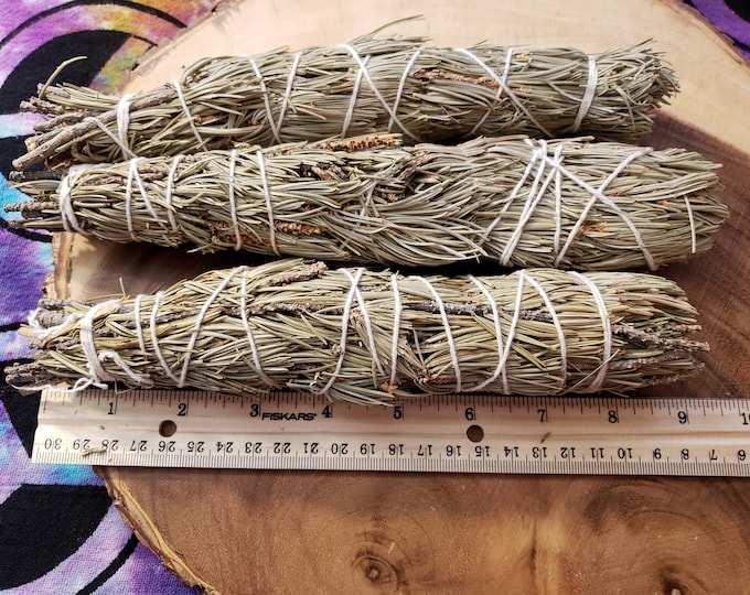 Large Pinion Pine (Pinus Edulis, Pinyon Pine) ~ 1 bundle approximately 9-10 inches, wild harvested, Reiki infused