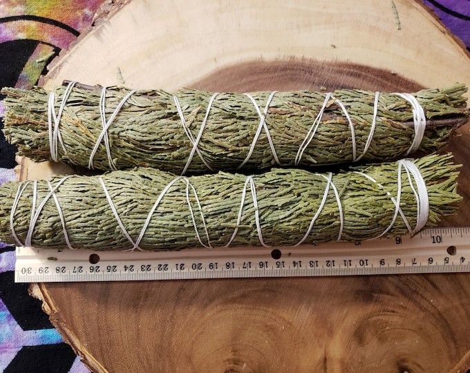 Large Cedar (Thuja plicata) bundle approximately 9-10 inches, wild harvested, Reiki infused
