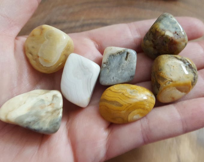 Crazy Lace Agate ~ 1 small/medium Reiki infused tumbled stone approx .75 inches