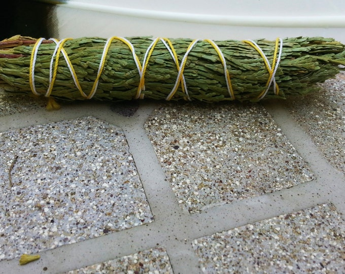 Med Cedar (Thuja plicata) Bundle approximately 4 inches, wild harvested, Reiki infused
