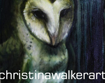 Barn Owl (original oil)
