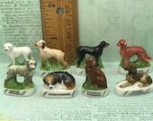 HUNTING DOG Breeds Beagle Irish Gordon Setter Griffon Dogs rhodesian ridgeback - French Feve Feves Dollhouse Miniature W245