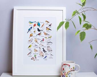 Bird art, nursery print, wall art, new baby present, illustrated birds, A4 art print, ornithology, nature illustration
