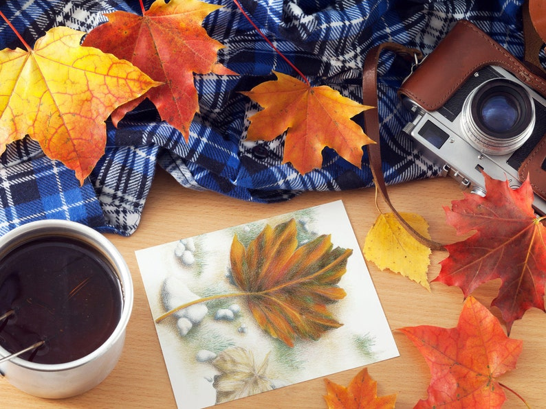 Autumn Maple Leaf Cards & Gift Tags image 0