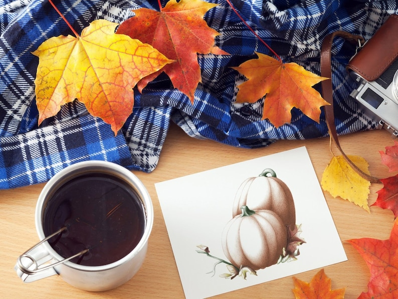Pumpkin Cards: Thanksgiving / Autumn / Harvest image 0