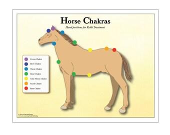 printable 7 chakra animal pet chart for reiki hand positions etsy