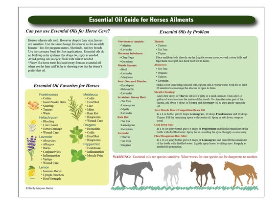 Printable Essential Oil Chart For Horses