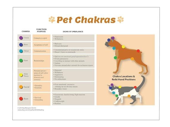 photograph relating to Printable Chakra Chart identify Reiki Chart - Reiki Therapeutic
