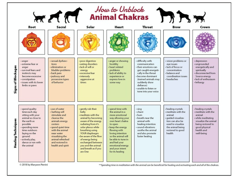 Printable Animal Chakra Blockages and Healing Techniques
