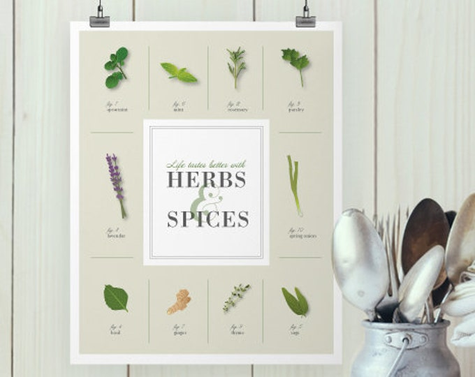 Digital Herbs and Spices Poster
