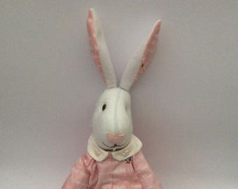 Adorable Bunny Rabbit