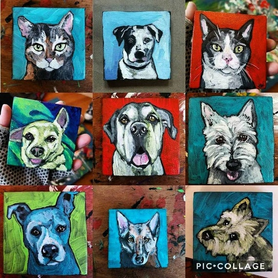 Contemporary Custom Acrylic Pet Portrait Painting on Canvas by Artist Jennifer Boes