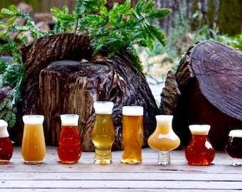Big Set of Pretentious Beer Glasses, Craft Beer Glassware, Hoppy, Subtle, JuicyY, Hazy, THE, Tulip, Sequel and Big Sexy