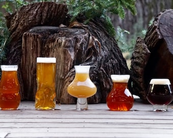 Select Set of Pretentious Beer Glasses, Craft Beer Glassware, THE, Subtle, JuicyY, Big Sexy and Sequel