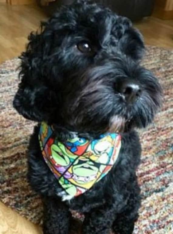 On sale tie on dog bandana in ninja turtle ccuart Gallery