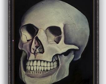 Human Skull - Realism - From Original Oil Painting (Still life)