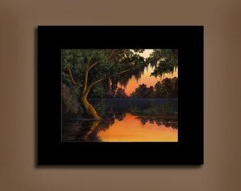 Edisto Island River - Serenity II