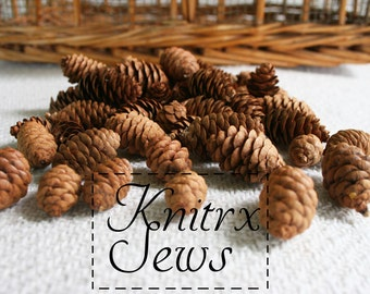 1 kg Pack of Austriaca Pine Tree cônes-Christmas Festive DECORATION-Approx 50