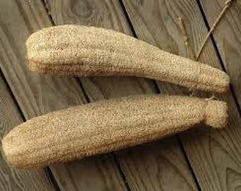 Luffa aegyptiaca cylindrica seeds, organic seeds,100,luffa sponge,gardening