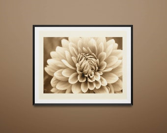 Fine Art Photo Print - Dahlia in Sepia tone - vintage look - soft - neutral - cream - brown - macro - art print - home decor - flower petals