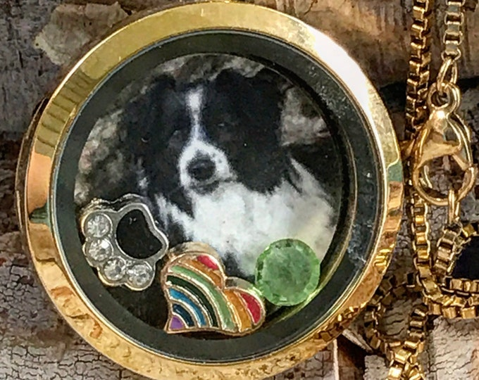 "Rainbow bridge pet memorialLocket- necklace- pet loss gift- stainless gold - 24""Stainless box chain"