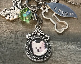 Pet loss~ rainbow bridge pet memorial photo charm necklace