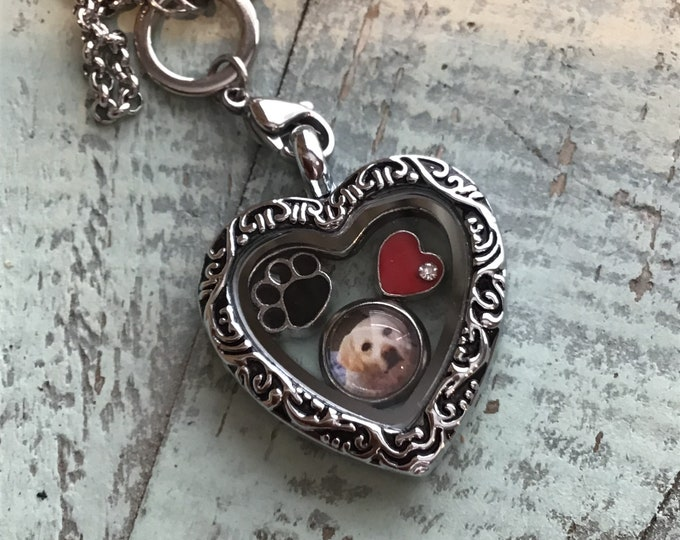 Pet loss rainbow bridge cat~dog memorial heart locket with floating picture charm