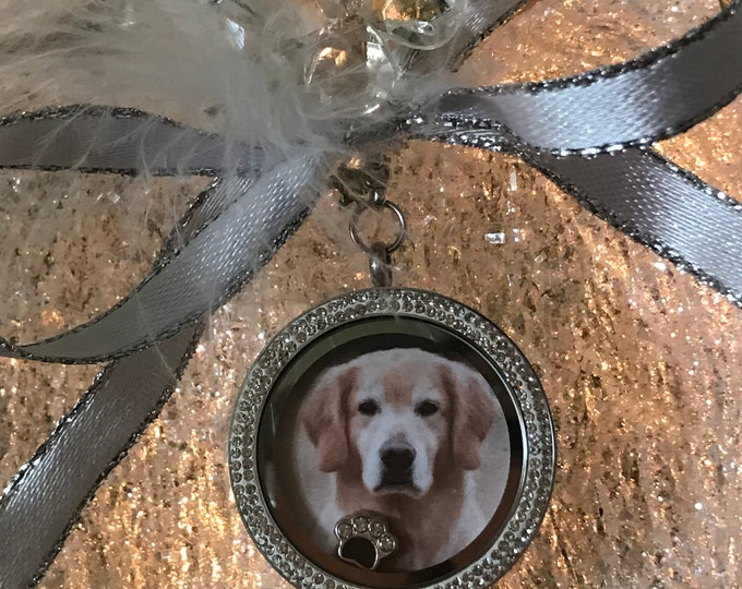 Rainbow bridge 2018 angel wing locket memorial ornament - pet loss gift