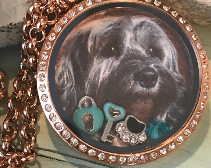 Rainbow bridge key to my heart rose gold picture locket - floating charms