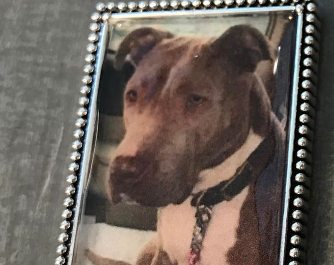 Rainbow Bridge Memorial pet picture keychain with paw print frame
