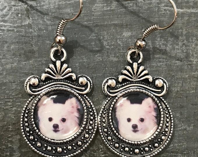 Rainbow bridge pet memorial ~ photo earrings birthstone option
