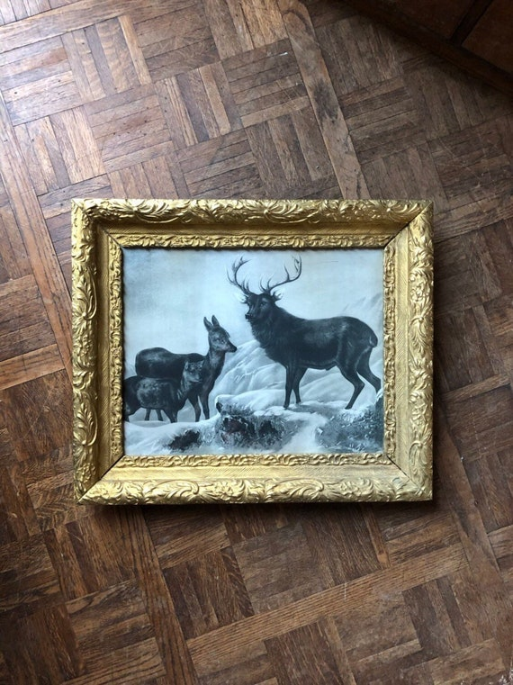 Antique Framed Print, Large Antique Print in Gold Frame, Deer Buck Print, Gold Decor, Deer Decor