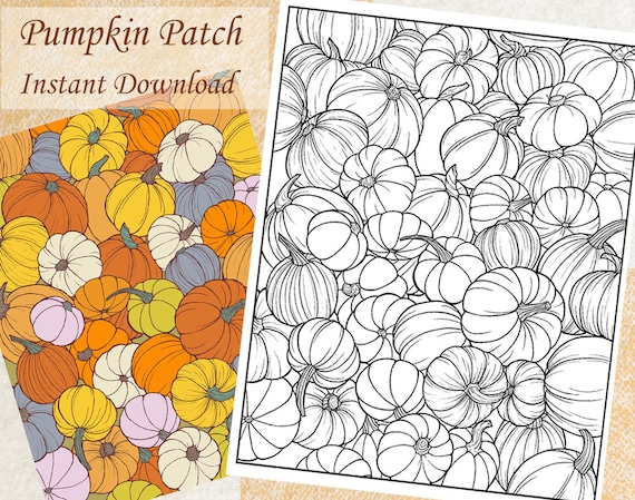 Pumpkin Patch Fall Autumn Coloring Page for Teens and Adults