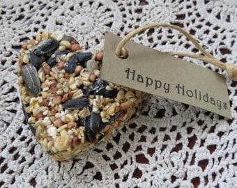 10 Handmade Vegan Bird Seed Ornaments