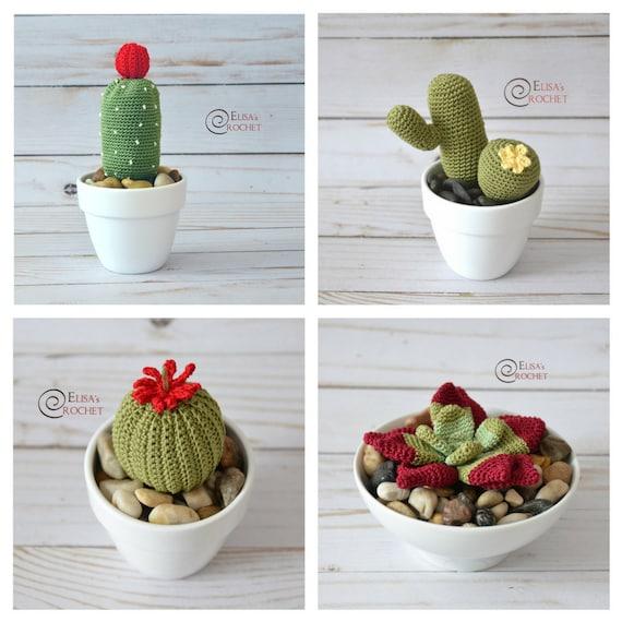 CROCHET PATTERN SUCCULENTS Amigurumi / Cactus / Flower / | Etsy