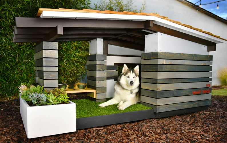 The Dog House - Mid Century Modern