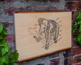 Anatomy of the Elephant    Screenprinted Wood Slab    Wall Art