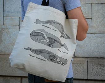 Anatomy of the Whale || Tote Bag || 100% Recycled Cotton