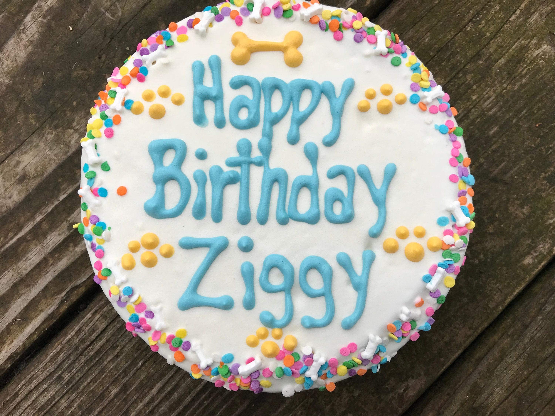 Dog Treats Homemade Customized Birthday Cake For Dogs