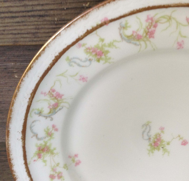 Schleiger 57 R Antique Haviland Limoges Dinner Plate French Country Antique Collectible Shabby Chic Princess Half Price Haviland Sale