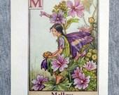 Mallow Alphabet Letter M ...