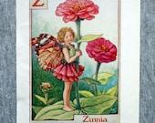 Zinnia Alphabet Letter Z ...