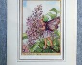 Lilac Flower Fairy Vintag...