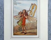 Hazel Catkin Flower Fairy...