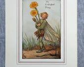 Coltsfoot Flower Fairy Vi...