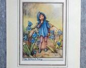 Scilla Flower Fairy Vinta...
