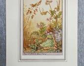 Stork's-Bill Flower F...