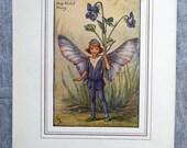 Dog-Violet Flower Fairy V...
